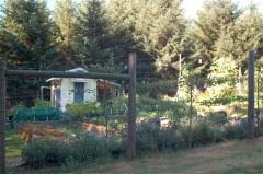 2013 garden