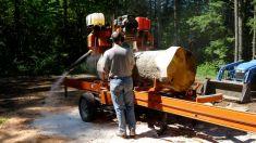 milling an oak log