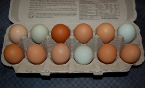 1. farm fresh eggs.