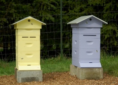 beehives