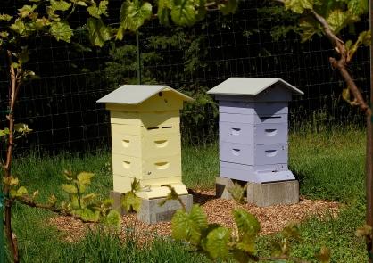 FullCircle Farm Apiary
