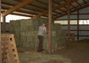 filling the loft
