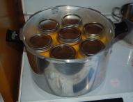 peaches in the pressure canner