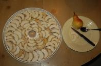 drying barlett pears