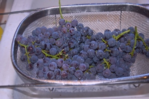 rinse grapes w/ cold water