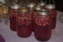 jars of grape juice cooling