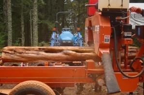 slabbing a yew log