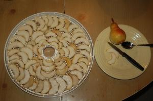 drying pears