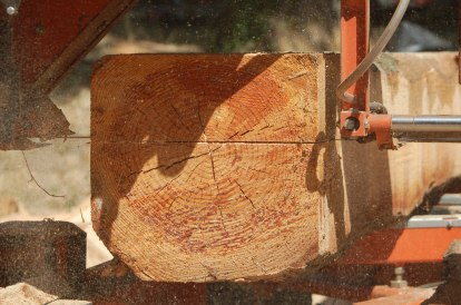 planking a fir log