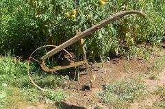 Dad's wheelhoe & our farm logo