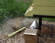 spring hive maintenance