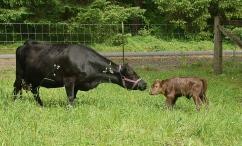 Mom & her new son Merrideth & Walter