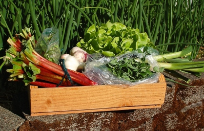 spring FarmShare box