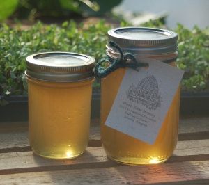 FullCircle Farm Pure Raw Honey