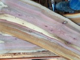Pacific Madrone slab