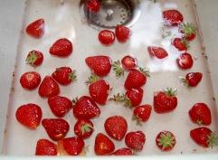 rinse berries